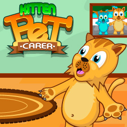 kitten-pet-carer